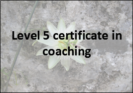 coaching in education level 5 certificate in coaching