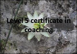 coaching in education level 5 certificate in coaching